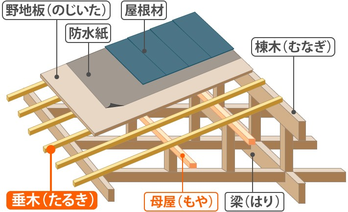 垂木周辺の構造俯瞰図