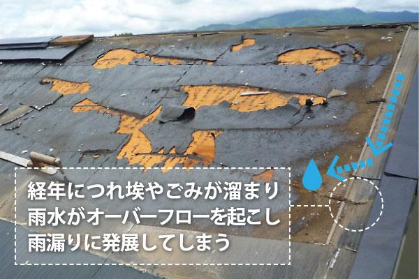 経年につれ埃やごみが溜まり雨水がオーバーフローを起こし雨漏りに発展してしまう